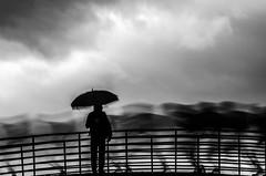 Flux (PaxaMik) Tags: flux black blackandwhitephotos silhouette silhouettefloue flou blur pluie rain rainingdays rainingday umbrella bridge pont parapluie contraste noiretblanc noir clouds cloudy