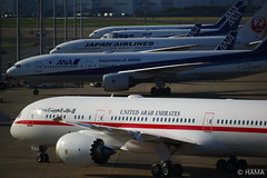 Tokyo International Air Port (HAMA-ANNEX) Tags: ana 東京 羽田空港 hnd airport airplane k1 smcpentaxda★300mmf4edifsdm