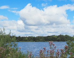 Am See (Tina0013) Tags: landesgartenschaueutin eutin flickr see