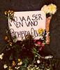 Epitaph (Aaron Montilla) Tags: aaronmontilla 2017 epitaph epitafio flowers flores reminder recordatorio documentaryphoto fotografiadocumental internationalflickrawards iso200