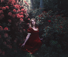 Of Royal Blood (Thomas Oscar Miles) Tags: fineart fashion flowers portraiture blood beauty thomasoscarmiles magic royal red darkart conceptual