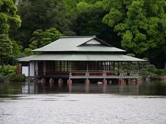P1004197 (digitalbear) Tags: panasonic lumix gh5 sumida river kiyosumi garden eidai bridge tokyo japan sharehotel lyuro skytree fukagawameshi miyako yakatabune