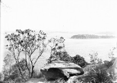 Sydney Harbour from Taronga Park Zoological Gardens (State Library of New South Wales collection) Tags: statelibraryofnewsouthwales sydney harbour views zoos taronga architecture buildings