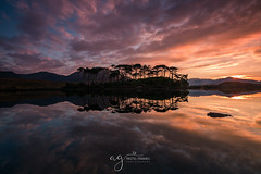 Sun is rising at the Derryclare Lough (Pastel Frames Photography) Tags: connemara national park sun is rising derryclare lough co galway ireland pine island sunrise amazing reflections mountains tress water sky clouds nature travel travelphotography lee filters early morning connemaranationalpark
