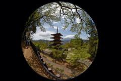 Chureito Pagoda (Matthias Harbers) Tags: chureitopagoda pagoda park mountain tree people arakurayama sengen yamanashiken fujiyoshidashi arakura japan sigma8mmf35exdg circular fisheye sigma 8mm f35 ex dg circularfisheye tonemapped hdr 3xp photomatix dxo photoshop elements nikon d750 summer clouds fuji circle