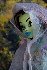 Frankie (Allan Saw) Tags: frankiestein monsterhigh doll toy portrait closeup outdoors forest dappled light colour color