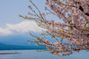 Yamanaka Lake (Keiichi.O) Tags: ngc nikon d800 ニコン 一眼レフ japan landscape nature 風景 東京カメラ部 神奈川カメラ部 ファインダー越しの私の世界 カメラ好きな人と繋がりたい 写真好きな人と繋がりたい loversnippon lovesnippon 1x flickr 500px tokyocameraclub