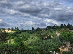 Florence Tuscany (Belinda Fewings (3 million views. Thank You)) Tags: belindafewings panasoniclumixdmc bokeh city street seaside colour colourful artistic pbwa creativeartphotograhy creative arty beautiful beautify beauty lovely outdoors outside out best depthoffield garden color colours colors interesting interest water river florence firenze italian italy italia tuscany countryside green trees poplars holiday trip clouds