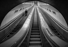 ...hacia abajo o hacia arriba ... (franma65) Tags: budapest metro
