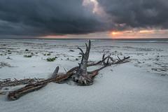 Our Island Getaway - Cumberland Island, GA (ChuckPalmer {cepalm}) Tags: cumberlandisland georgia sunrise travel beach clouds driftwood sand storm sun chuckpalmer