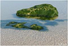 stenen in het water (HP025786)