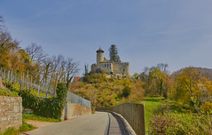 Castle Birseck in Arlesheim (Switzerland) (Damian B.) Tags: ohne arlesheim autumn autumnforest autumnlandscape basel building castle church dom dornach forest goetheanum hill house landscape nature panorama panoramacity panoramaforest panoramalandscape panoramanature sky solothurn switzerland town travel view water