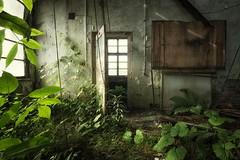 back to nature (blende einspunktacht) Tags: backtonature ilovedecay decay lostplaces verlasseneorte canon urbex urbanart nature