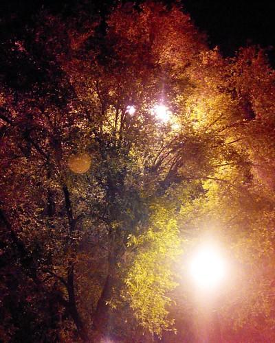 Немного вечернего Харькова #харьков #украина