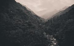 1704_DPRK -883.jpg (The French Travel Photographer) Tags: dprk countryside landscape flickrcomsebmar coréedunord campagne northkorea ©sébmar instagramsebas nature