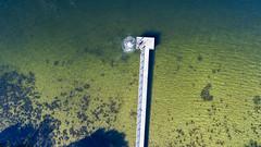 Freshwater Bay_Mosman Park_Western Australia_0155