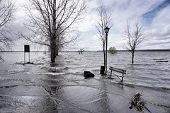 Where is the beach? (beyondhue) Tags: ottawa river gatineau flood high level water beyondhue ontario quebec bench pier wave canada spring rain