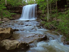 Robinson Falls In Spring (Trains & Trails) Tags: woodlands nature outdoors waterfall opossumrun fayettecounty dunbartownship pennsylvania waterway rocks forest springtime may explore