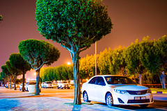 Saudi Nights (Muhammed Fawaz Sherief) Tags: saudi night lights camry trees green sky beauty ksa