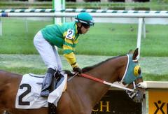 "2017-04-23 (54) r10 #2 Jevian Toledo on #2 Hadeea (JLeeFleenor) Tags: photos photography md marylandracing maryland marylandhorseracing laurelpark jockey جُوكِي ""赛马骑师"" jinete ""競馬騎手"" dżokej jocheu คนขี่ม้าแข่ง jóquei žokej kilparatsastaja rennreiter fantino ""경마 기수"" жокей jokey người horses thoroughbreds equine equestrian cheval cavalo cavallo cavall caballo pferd paard perd hevonen hest hestur cal kon konj beygir capall ceffyl cuddy yarraman faras alogo soos kuda uma pfeerd koin حصان кон 马 häst άλογο סוס घोड़ा 馬 koń лошадь outdoors outside"