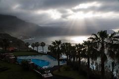 Madeira sunbeams (Mibby23) Tags: ponta delgada north madeira sunbeam ray light tree sae pool canon 70d 1585mm