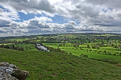 Yorkshire (mattgilmartin) Tags: trees fields landscape yorkshire dales scenic