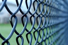 The Sound Barrier! (Haytham M.) Tags: texture stroll apwalk walls chicken fence