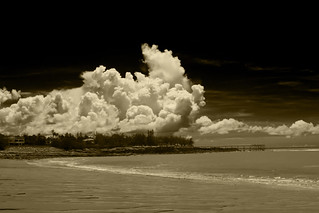 Nightcliff Beach in Sepia