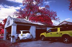 Auto Shop (infobong) Tags: austin eastaustin colorinfraredfilm colorinfrared infraredfilm infrared