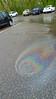 0430171207c_oil 4r (CoriJae) Tags: minnehaha creek spring oil spill pollution ecology minneapolis minnesota hopkins creekwood