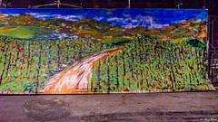 il finto paesaggio (Clay Bass) Tags: 12800 nikon roddino d750 landscape natural night paint