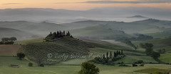 Belvedere panorama (pixellesley) Tags: tuscany italy farmhouse iconic landscape dawn predawn spring mist soft trees fields manicured vines farmland house home lesleygooding 5dsr 5shotpano panorama