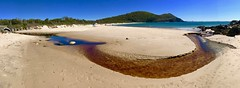 Elizabeth Beach, Pacific Palms, Mid North Coast, NSW (Black Diamond Images) Tags: appleiphone7plus appleiphone iphone7plus iphone iphonepanorama panorama appleiphone7pluspanorama iphone7pluspanorama australia elizabethbeach pacificpalms midnorthcoast nsw greatlakesnsw australianbeaches beach creek sand nswnationalparks