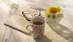 Sunday morning ..... (Elisafox22 slowly beating the Shingles!) Tags: elisafox22 sony simplepleasures sunday morning sunshine morninglight table tablecloth cup mug tea coffee flowers daisies yellow white blue poetry edwinmuir book books edwardthomas poem therefugees elisaliddell©2017 rx10m3