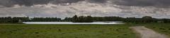 Pano oostvaardersplassen (madphotographers) Tags: konik konikpaarden oostvaardersplassen horses horse nature wild wilderness animals