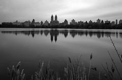 Jacqueline Kennedy Reservoir  _ BW (Joe Josephs: 2,861,655 views - thank you) Tags: nyc newyorkcity travel travelphotography joejosephs photojournalism â©joejosephs2017 ©joejosephs2017 blackandwhitephotography blackandwhite centralpark centralparknewyork urbanparks urbanlandscapes