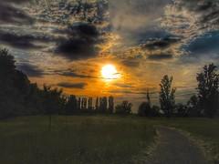 Il sentiero......... (ilfotografodellapausapranzo1) Tags: campagna fiumepo pistaciclabile canon canonsx150is tramonto cieloaltramonto skysunset
