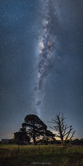 Moonlight feels right (nightscapades) Tags: airglow astronomy astrophotography aurora autopanopro canberra cemetery church currawang galacticcore goulburn milkyway moon moonlight moonlit night nightscapes pano panorama panos sky stars stitch trees