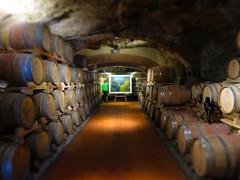 IMG_3932 (David Danzig) Tags: italy 2016 july fattoria santappiano tuscany winery chianti wine barrells cellar