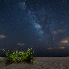Florida Nights (alpha5100) Tags: stargazing astrophotography galaxy stars beach beachnight pensacolabeach pensacolaflorida florida floridabeach beachlife sonyphotography