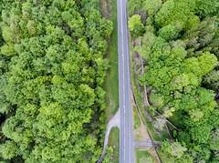 Through the trees (clairehalas) Tags: drone ariel woodland trees roadarundelenglandunitedkingdomgb