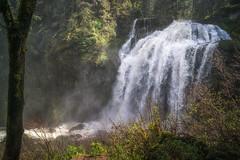 Middle Mashel (writing with light 2422 (Not Pro)) Tags: littlemashelfalls middlemashel washingtonstate waterfall sonya77 richborder landscape forest