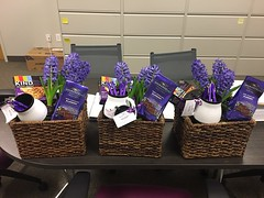 Neptune Society Parma / Cleveland, OH - Fragrant Spring Baskets Donations for Local Hospices