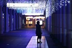 The power of light (Elios.k) Tags: horizontal outdoors people oneperson girl standing corridor deck pedestrian lights dof depthoffield christmaslights auroraoflight hanging ceiling leds silhouette shadow reflection colorful bokeh sign focusinforeground backgroundblur travel travelling december 2016 winter vacation christmas decoration illumination installation dark night hikarinomachi hikarinochikara canon 5dmkii camera photography colour color hakata fukuoka hakataku fukuokaprefecture kyushu japan asia jrtrainstation