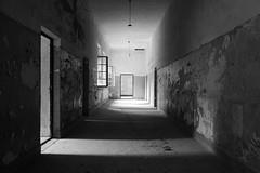 quanta solitudine - how much loneliness (francesco melchionda) Tags: prevlaka blackwhite light shadows doors windows walls explore urbex urbanexploration abandoned decay decadence ruins loneliness
