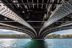 Lyon - Pont de l'Université (Rafael Zenon Wagner) Tags: nikon d810 tamron 1530mm 15mm frankreich france lyon stadt city architektur architecture stahl steel brücke bridge flus river grün green