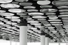 Pebbles Lounge Decke (auschmid) Tags: auschmid slta99 sal85f14z basel sch roche bau1 kunstambau bw sw planart1485 za architecture