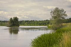 Teichgebiet (berndtolksdorf1) Tags: deutschland thüringen teich teichgebiet jahreszeit frühling wasser ufer bäume landschaft landscape