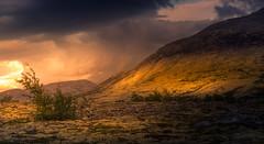 Storm´s Coming (andreassofus) Tags: landscape grandlandscape nature norway mountains norwegianmountains mountainscape clouds storm rain drama dramatic light sunlight rondane rondanenationalpark outdoor travel travelphotography