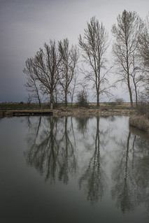 Canal invernal v2